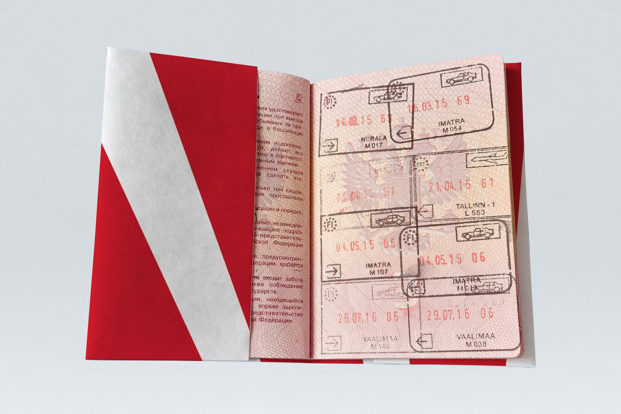 Обложка на паспорт NEW WALLET - New Pokemon; сделан из Tyvek®