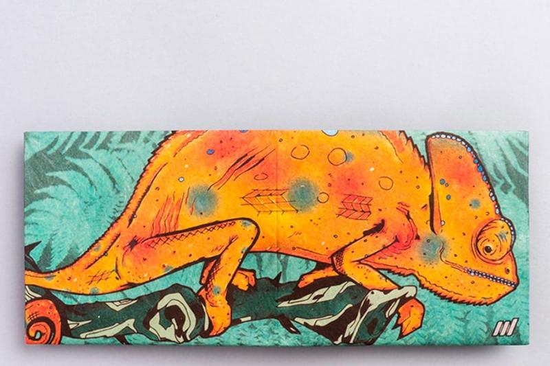 Кошелек NEW WALLET - New Chameleon; сделан из Tyvek®